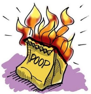 flaming_bag_of_poop_answer_7_xlarge